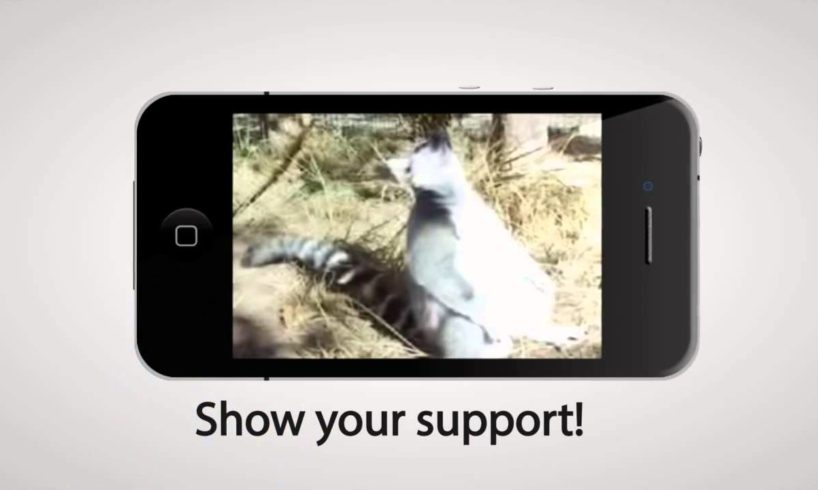 Animal Rescue Site Videos: good people rescuing animals in bad situations