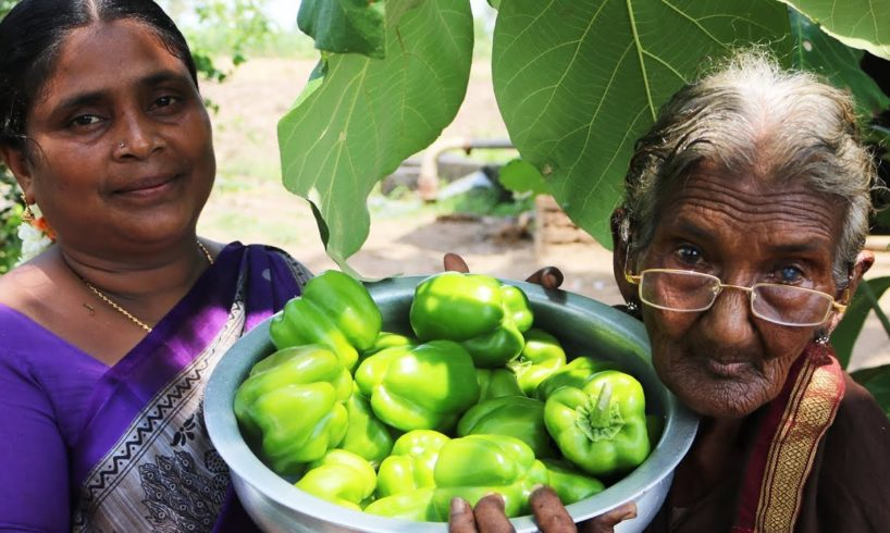 Capsicum Tomato Curry prepared by mastanamma    Country foods