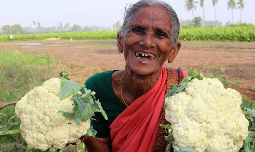 Cauliflower Tomato Curry By Bharatamma | Country foods