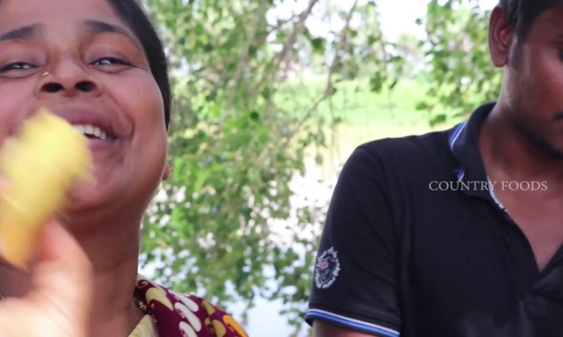 Dhokla Recipe | How to Make Soft and Spongy dhokla idli By Granny's Grand daughter Rajini