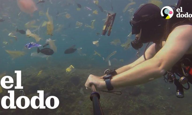 El plástico se está adueñando del océano
