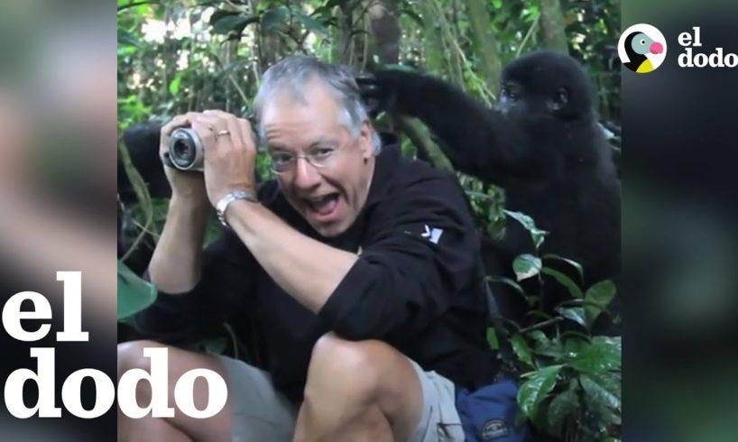 Encuentros sorpresivos con animales salvajes
