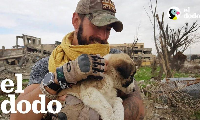 Este soldado le salvó la vida a una cachorrita y luego se dio cuenta de que no podía vivir sin ella