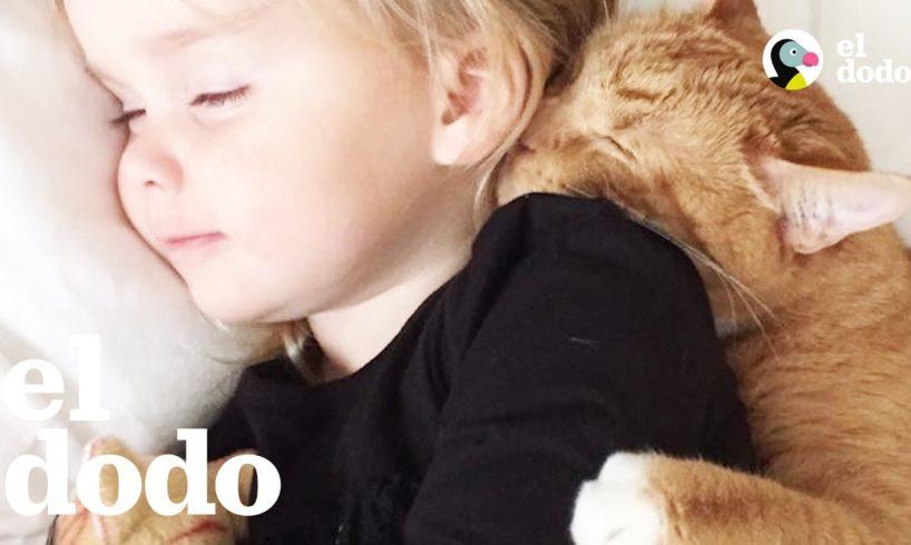 Gatito ama a estas niñitas más que a nada