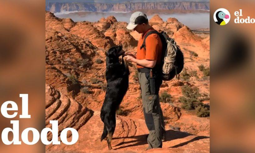 Hombre rescata a un cachorro abandonado en un cañón