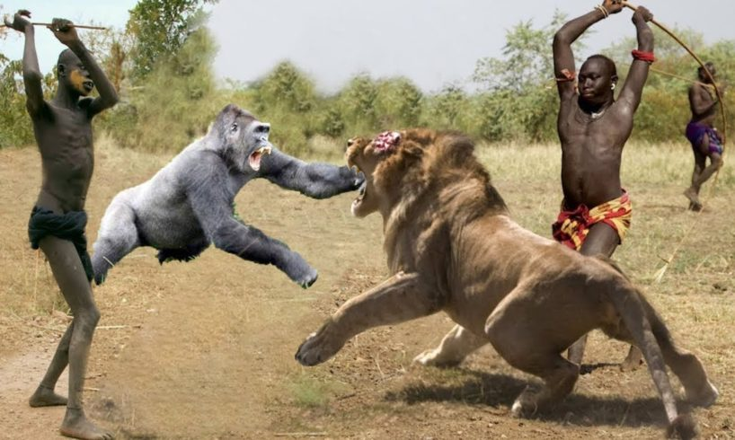 Hunters and Predators of the Planet Wild Animals Attacks - Wild Animal Fights Caught On Camera