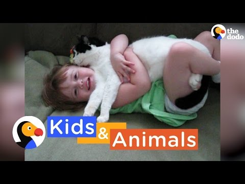 Kids and Animals Playing | The Dodo