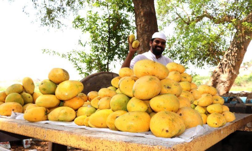 Mango lassi recipe || Mango Yogurt Smoothie || Summer drink || Nawabs kitchen