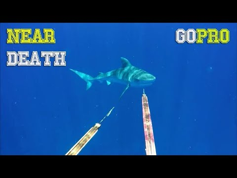 NEAR DEATH CAPTURED by GoPro and camera pt.57 [FailForceOne]