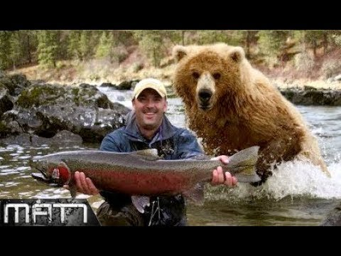 NEAR DEATH EXPERIENCE || 7 MOST TERRIFYING CLOSE CALLS WITH WILDLIFE