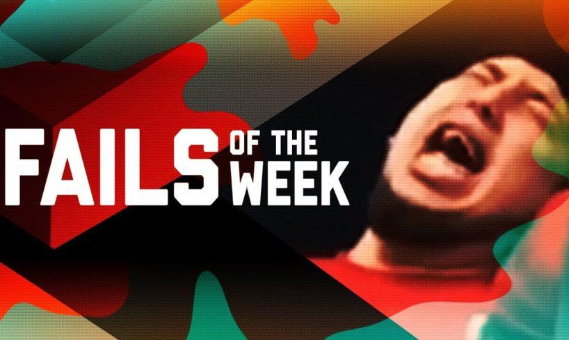 Owl Meets Drone: Fails of the Week (February 2019)   FailArmy