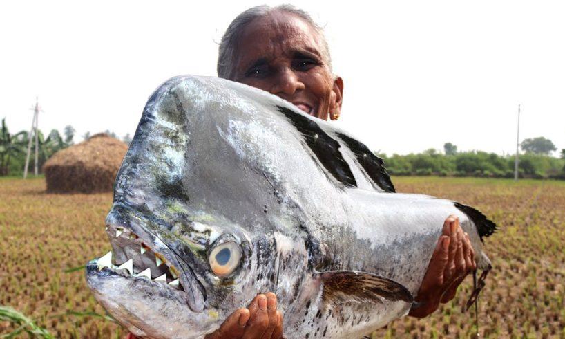 Piranha Fish Recipe |  Bharatamma Cooking Piranha Recipe | Country foods