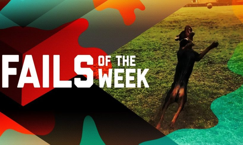 So Close, Yet So Far: Fails of the Week (January 2019)