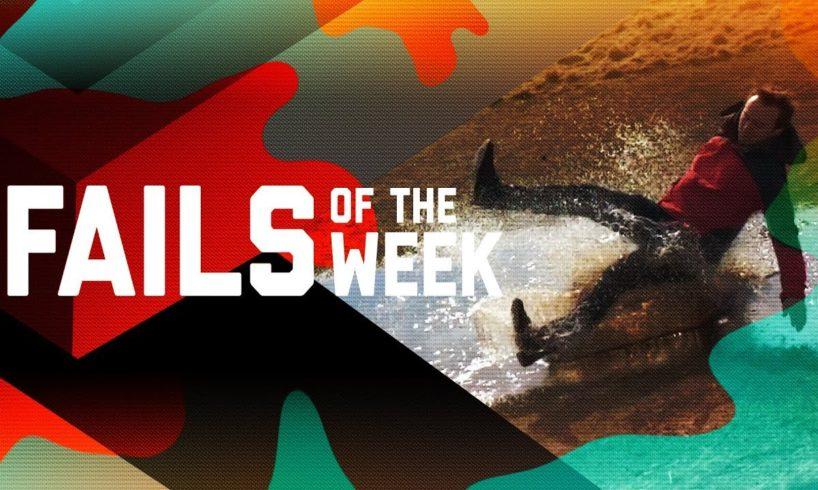 Treadmill Terror: Fails of the Week (November 2018) | FailArmy