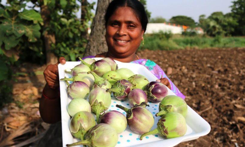White Brinjal Recipe || Eggplant Recipe || Country foods