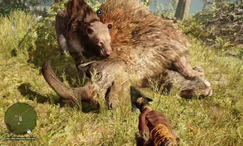 FAR CRY PRIMAL ANIMAL FIGHTS MONTAGE!!!