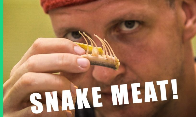 9 Reasons to eat snake in Taiwan