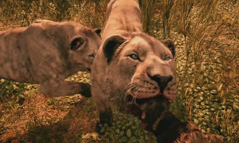 ANIMALS IN FAR CRY PRIMAL (Far Cry Primal Animal Fights PS4 Gameplay)