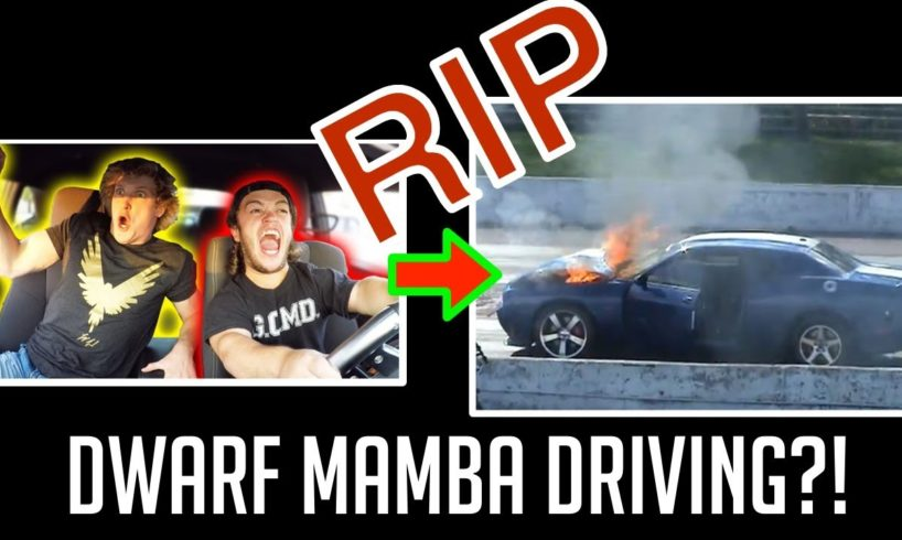 DRIVING WITH EVAN FUNNY MOMENTS AND ROAD RAGE COMPILATION! NEAR DEATH + CRASH