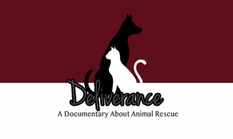 Deliverance: A Documentary About Animal Rescue