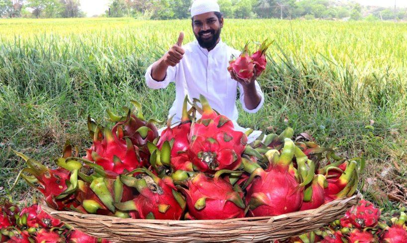 Dragon fruit Milk Shake For Hungry Kids | Nawabs Kitchen