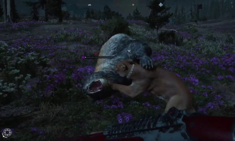 FAR CRY NEW DAWN - ALL ANIMAL FIGHTS - PART 2!!!!