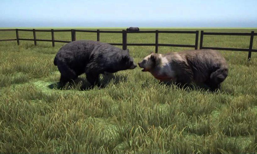 Far cry 4 animal fights