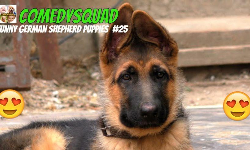 Funny German Shepherd Puppies Video #25-Funniest & Cutest Puppies Compilation