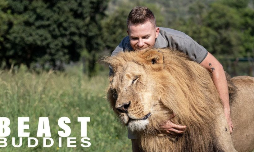 Lion King: 23-Year-Old Is Best Friends With Big Cats | BEAST BUDDIES