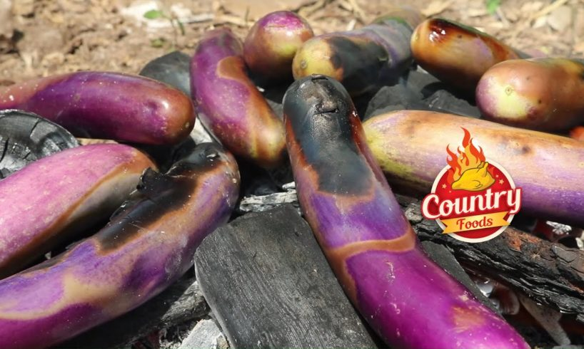 Roasted Brinjal Recipe    Special 'Baingan Bharta Curry By Our Granny