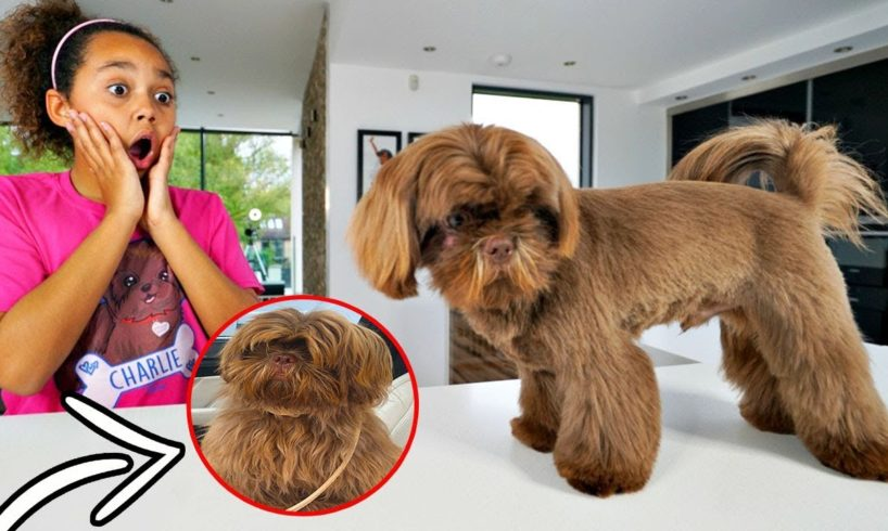 TIANA'S CUTE PUPPY MAKEOVER TRANSFORMATION!!