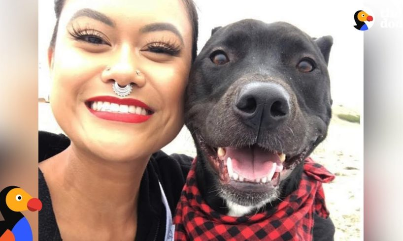 Woman Rescues Dog Who Ends Up Rescuing Her | The Dodo