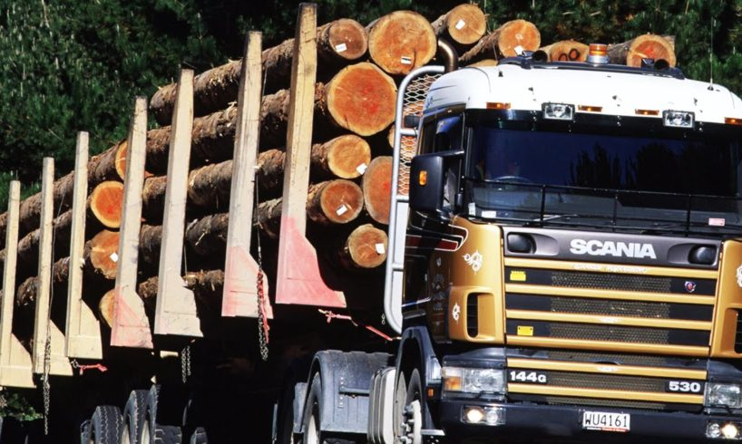"""""""Final Destination"""" in real life! (Accidents with timber trucks)"""