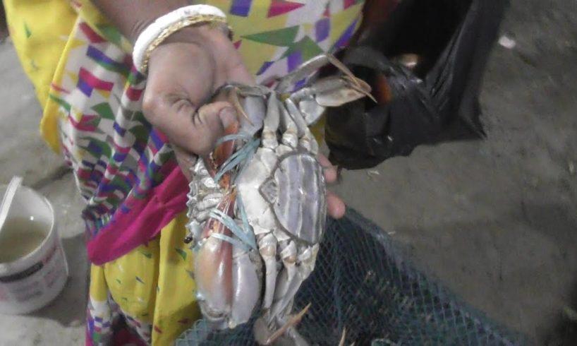 Big Size Crab Selling at Bakkhali Sea Beach West Bengal India   Street Food Loves You