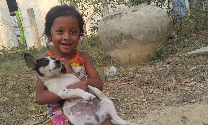 The animals Wildlife,The girl play with withe and black (small dog),