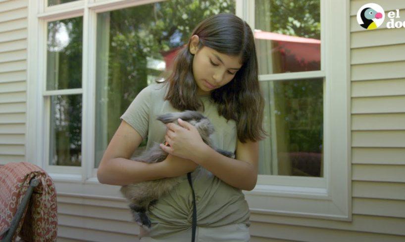 Camila y Buddy el conejo   Amigos Aventureros