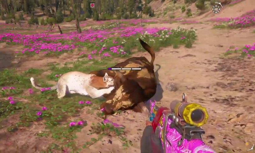 FAR CRY NEW DAWN - ALL ANIMAL FIGHTS - PART 3!!!!