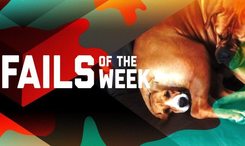 Nunchucks Gone Wrong: Fails of the Week (June 2019) | FailArmy