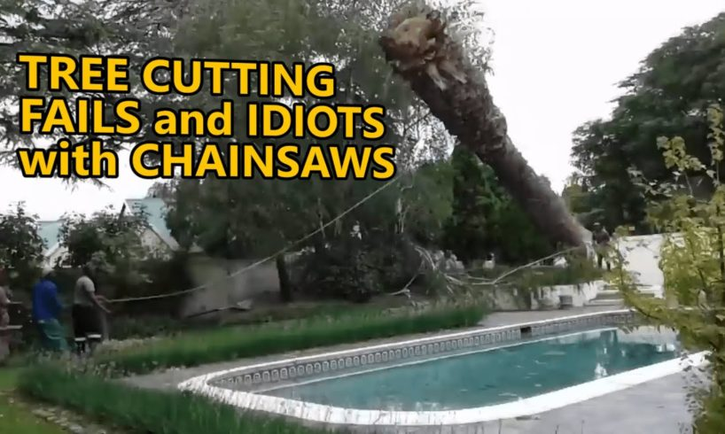 Tree cutting fails and idiots with chainsaws. FAIL COMPILATION. Part 3