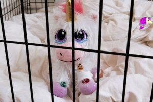 Unicorn Adoption ! Help and Care For A Cute Baby Unicorn Rescue Runts Plush Pet