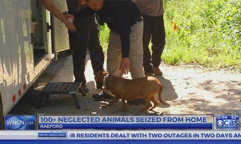 100+ neglected, abused animals being rescued from Hoke County home