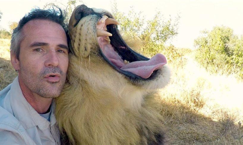 Animals Unique Bond   The Lion Whisperer