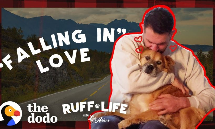 Guy Can't Stop Crying When It's Time To Get His Foster Dog Adopted   Ruff Life With Lee Asher