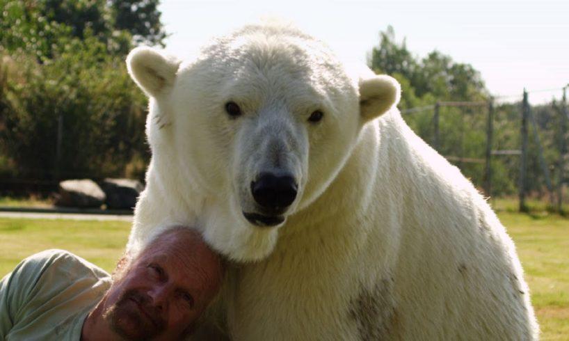 Man cuddles polar bear - Animal Odd Couples: Episode 2 Preview - BBC One