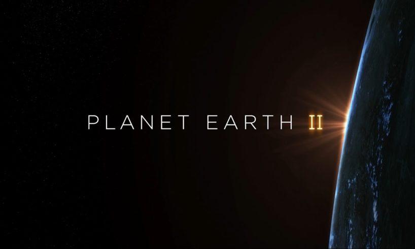 Planet Earth II Hans Zimmer Soundtrack 360°   BBC Earth