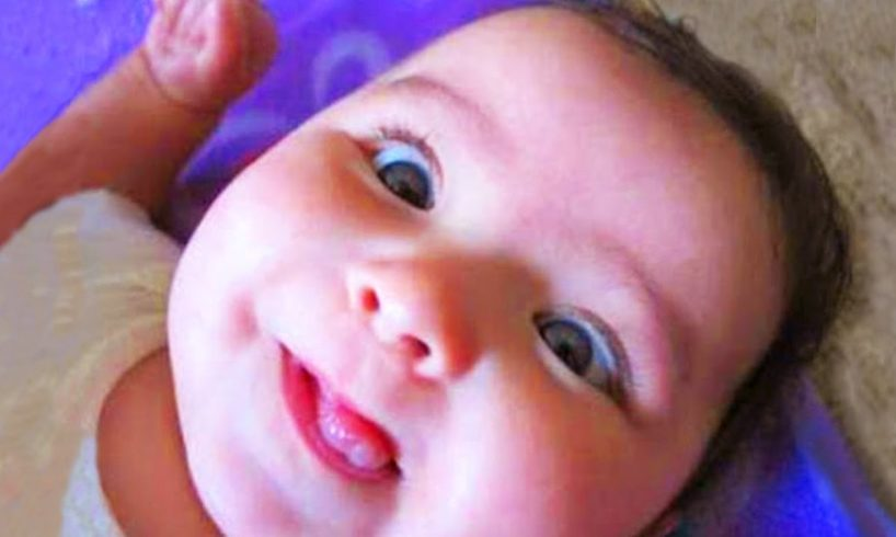 Top Funniest Baby of The Week  - Fun and Fails November 2019