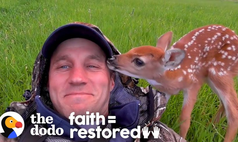 Injured Fawn Deer In Rocky Mountains Gets Adopted | The Dodo Faith = Restored