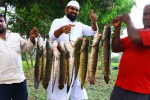 Koramenu Fish Recipe   Murrel Fish curry  Healthy Fish Curry  Nawabs