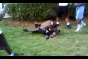 REALEST HOOD FIGHT 2013 MUST SEE HD!!!!!