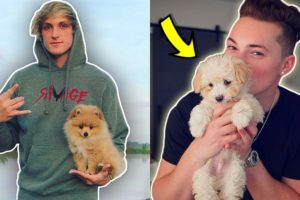 TOP 10 YOUTUBERS WITH THE MOST CUTEST PETS! (Logan Paul, RomanAtwood, PewDiePie)